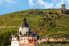 Burg-Pfalzgrafenstein